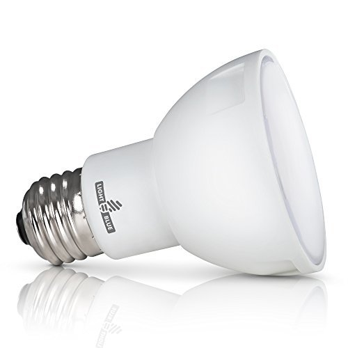 Indoor led light bulbs